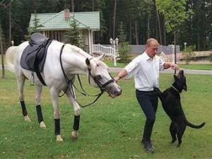 Во сколько обойдется жить рядом с Путиным и Медведевым?